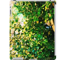 Sunshine and Greenery iPad Case/Skin