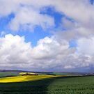 Southdowns Panorama by mikebov