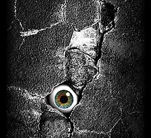 The walls have eyes by Steve Crompton