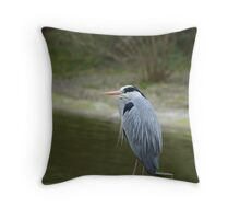 Great Blue Heron 2 Throw Pillow