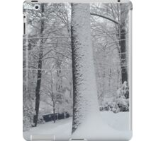 Seasons in Print - Maplewood, NJ iPad Case/Skin