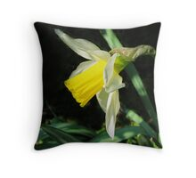 One In The Sunshine Throw Pillow