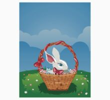 Easter Bunny with Eggs in the Basket 3 Kids Clothes