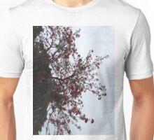 Alumni Plaza tree Unisex T-Shirt