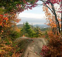 Autumn View from Bald Mountain, near Inlet and Old Forge, Adirondacks by TonyBeaverPhoto