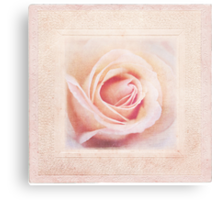Shabby Rose Canvas Print
