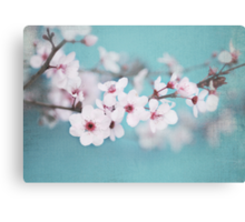 Blossoms on Blue Canvas Print