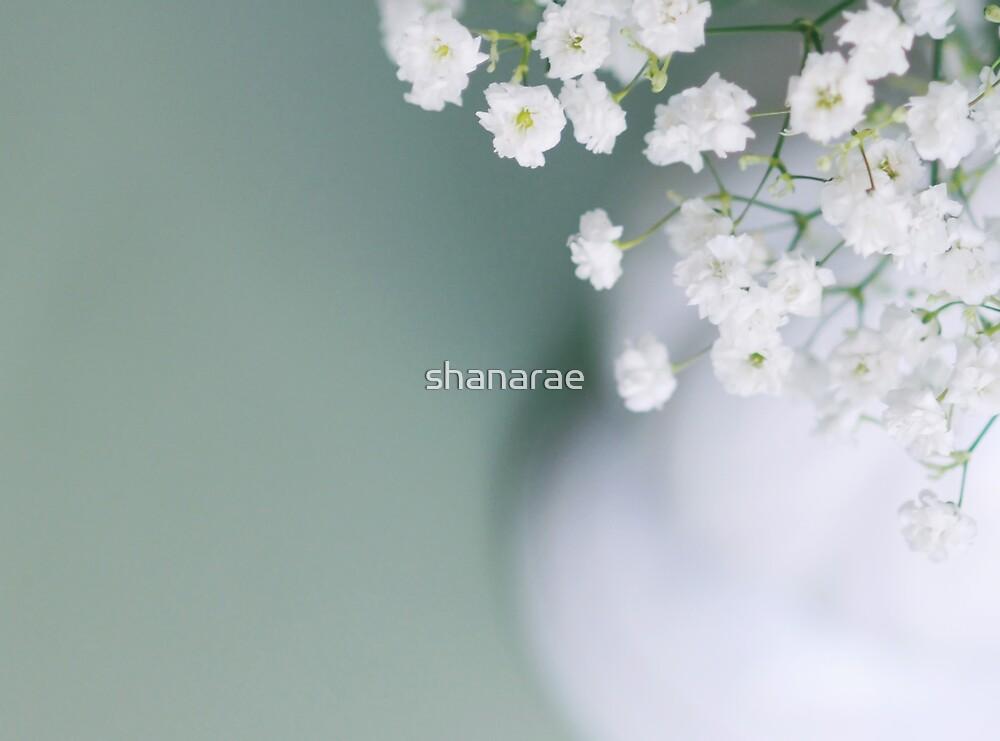 Delicate by shanarae