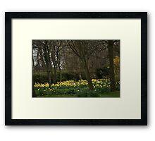 Spring Has Sprung! Framed Print