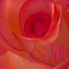 Om Rose by inkedsandra