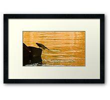 Heron Hunting Framed Print