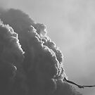 Into the Storm by ThinkSee