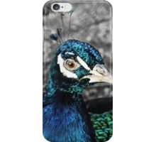 Peacock Portrait iPhone Case/Skin