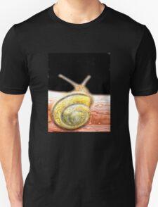 GALAXY..... BEING T-Shirt