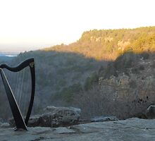 Majestic Harp II by Beth Stockdell