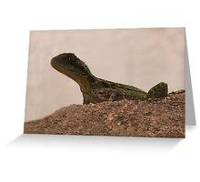 Baby Water Dragon Greeting Card