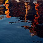 reflections1 by nixphotopix
