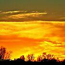 Sky Ablaze by Pat Moore