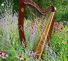 Floral Harp by Beth Stockdell