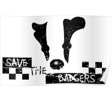 Save the Badgers Poster