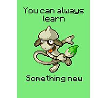 Smeargle #235 - You can always learn something new Photographic Print