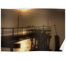 New Orleans Gulls in Mist Poster