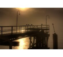 New Orleans Gulls in Mist Photographic Print