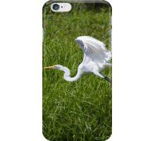 Great White Egret iPhone Case/Skin