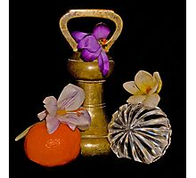 Old Brass Fruit and Flowers Photographic Print