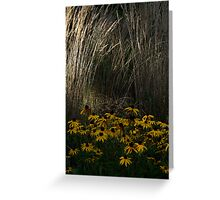Hiding Place Greeting Card