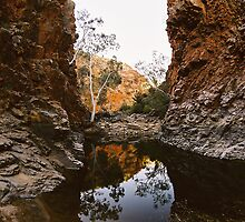Serpentine Gorge by Erland Howden