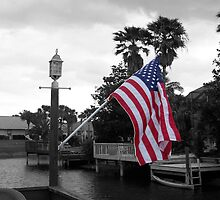 I Pledge Allegiance by Kristy  Dorris