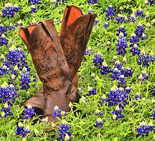 Texas Two Step by Tokay