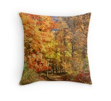 Northeast Fall Color Explosion Throw Pillow