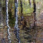Impressionist Reflection by enchantedImages