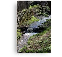 Small creek along the fence in Sibiel Romania Canvas Print