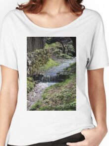 Small creek along the fence in Sibiel Romania Women's Relaxed Fit T-Shirt