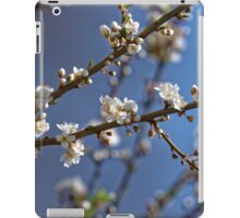 Plum blossom in the sky spring confirmation iPad Case/Skin