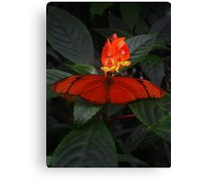 Like a Firefly Canvas Print