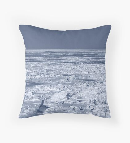 Frozen Shore Throw Pillow