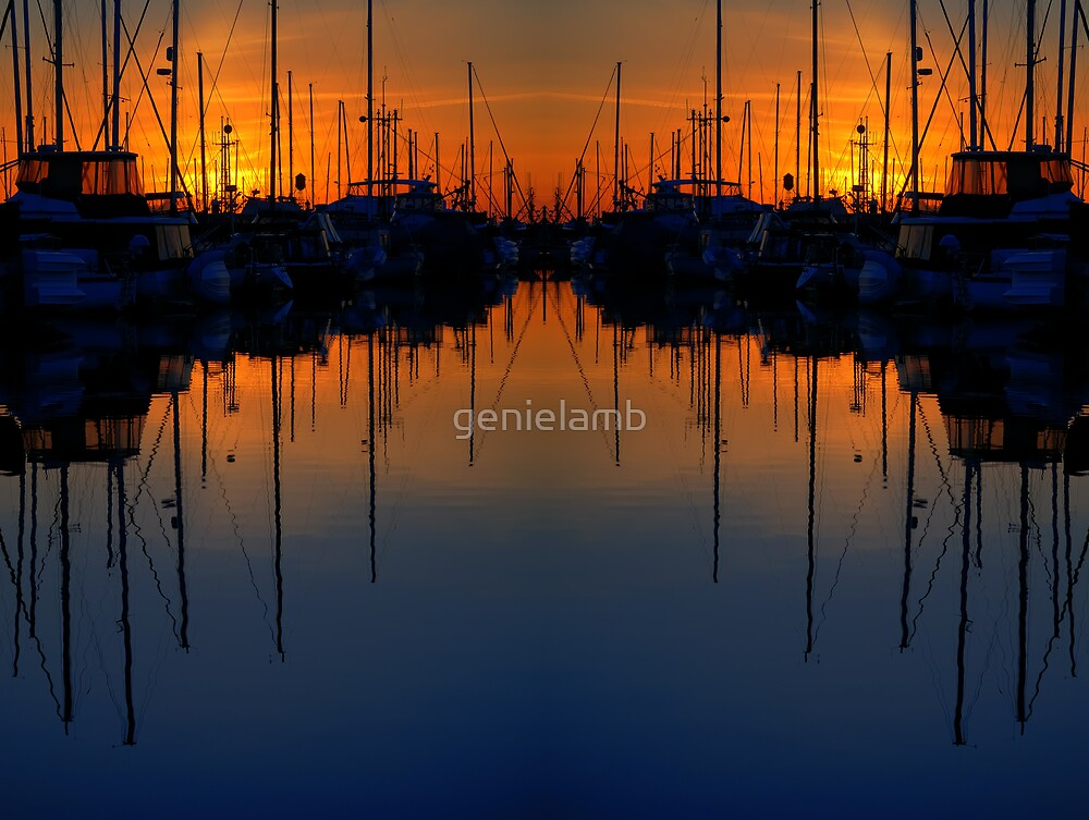 Double reflection by genielamb