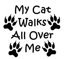 My Cat Walks All Over Me by imphavok