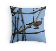 Can you Identify this Bird Please? Throw Pillow