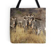 GREVY'S ZEBRAS - KENYA Tote Bag