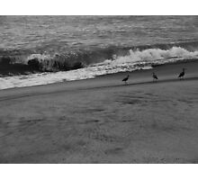 Three Photographic Print