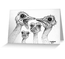 Ostrich Gossip Greeting Card
