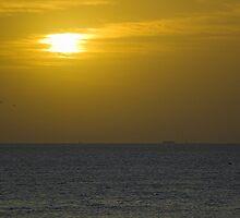 Out to Sea by Tamas Bakos