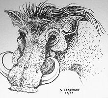 Warthog by sally seabright