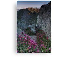 Penstemon, Moro Rock, & the Sierra Nevada Canvas Print