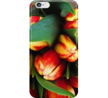 La Conner Tulip Festival Early Morning Hours iPhone Case/Skin